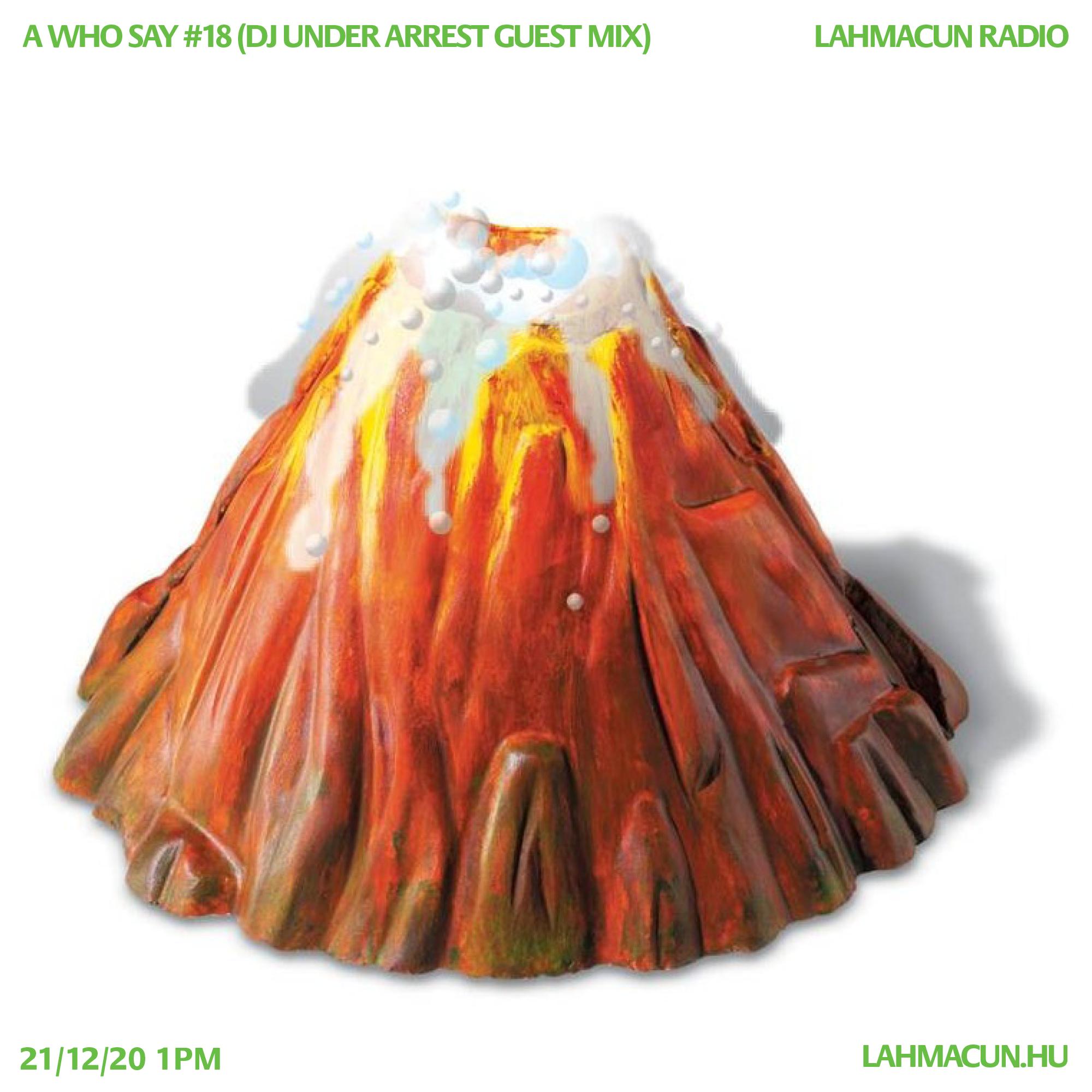 #18 (DJ Under Arrest Guest Mix)