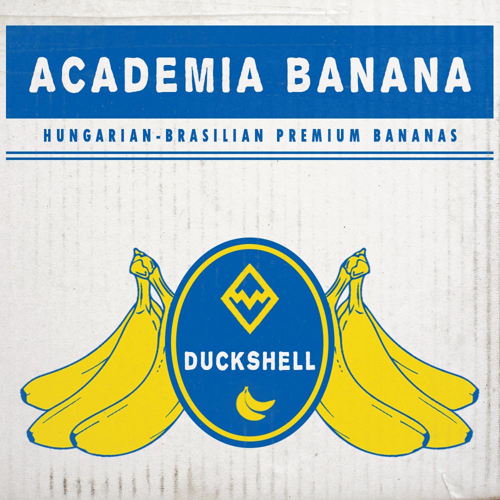 Duckshell album premier